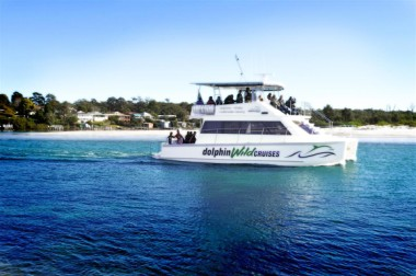 Whale Watch Cruises Jervis Bay